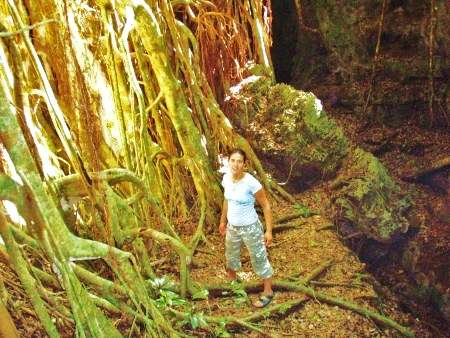 Carolynn standing next to a hugh Ovavatree in the rainforest of 'Eua island